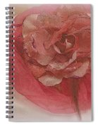 Fascinator Hats In White And Rose Spiral Notebook