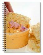 Fat Pigs 3 Spiral Notebook