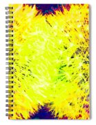 Fauvism Fun 4 Spiral Notebook