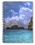 Favorite Color Blue Spiral Notebook