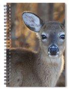 Fawn Spiral Notebook