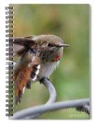 Fearless Friends Spiral Notebook