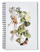 Feasting And Fun Among The Fuschias Spiral Notebook