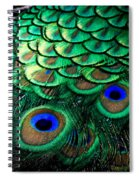 Feather Abstract Spiral Notebook