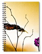 Feather And Carnation Spiral Notebook