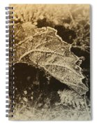 Feather And Leaf Spiral Notebook
