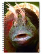 Feather Blenny - A Fish  Spiral Notebook