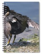 Feather Care Spiral Notebook