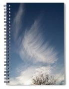 Feather Cloud  By Diane Schiabor Spiral Notebook