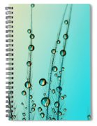 Feather Drops With Blue Spiral Notebook