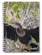 Feather Drying Spiral Notebook