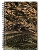 Feather Ice 2 Spiral Notebook