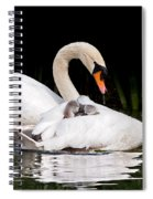 Feather Sunshade Square Spiral Notebook