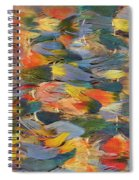 Feathered Cape Spiral Notebook