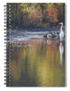 Feathered Friends Spiral Notebook