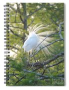 Feathered Spiral Notebook