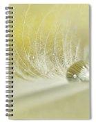 Feathered Softness Spiral Notebook