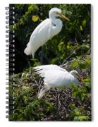 Feathers In A Twist Spiral Notebook