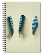 Feathers No1 Spiral Notebook