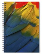 Feathery Details... Spiral Notebook