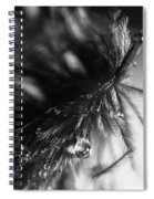 Feathery Drop Spiral Notebook