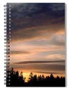 February Sky Spiral Notebook