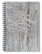 February Snow Spiral Notebook