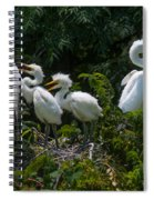 Feed Me Mom Spiral Notebook