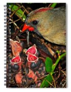 Feed Me Mommy Spiral Notebook
