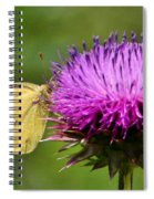 Feeding On Thistle Spiral Notebook