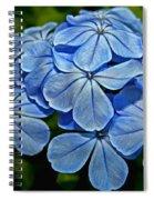Feeling Blue Spiral Notebook