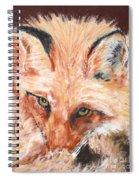 Feeling Foxy Spiral Notebook