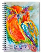 Feeling Owlright Spiral Notebook