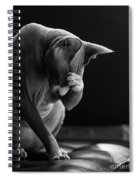 Feeling Your Pain Spiral Notebook