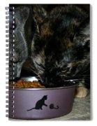 Feline Friends Spiral Notebook