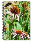 Female American Gold Finch Spiral Notebook