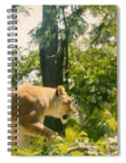 Female Lion On The Move Spiral Notebook