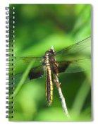 Female Widow Skimmer Spiral Notebook