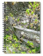 Fence And Beach Shrub Spiral Notebook
