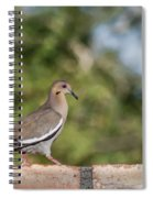 Fence Walker Spiral Notebook