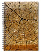 Fencepost Top 3 Spiral Notebook