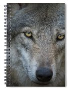 Fenris... Spiral Notebook