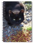 Feral Learning Trust Spiral Notebook