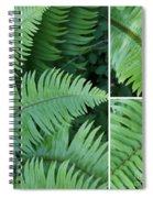 Fern Collage Spiral Notebook