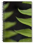 Fern Cyrtomium Fortunei Spiral Notebook
