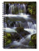 Fern Falls - 31 Spiral Notebook