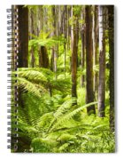 Fern Forest Spiral Notebook