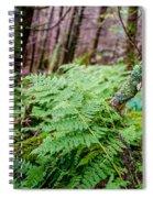 Fern In Forest Spiral Notebook