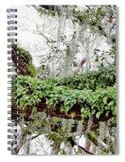 Resurrection Fern On The Limbs Spiral Notebook