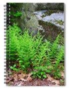Fern Patch Spiral Notebook